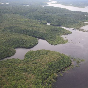 Amazonfloden